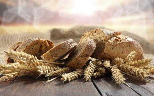 GDO'lu ekmek ve sağlığa etkisi