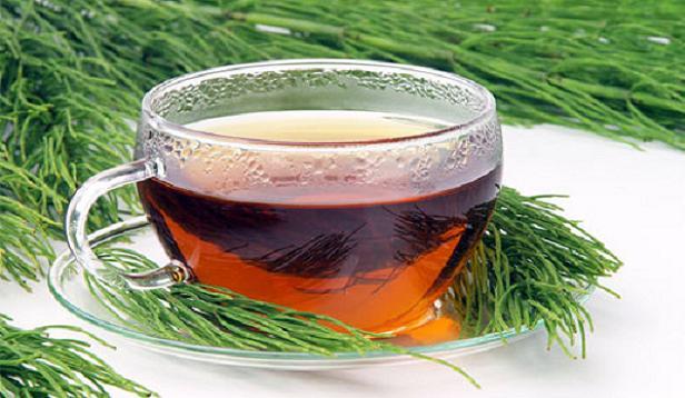 atkuyruğuotu çayı ile ilgili görsel sonucu