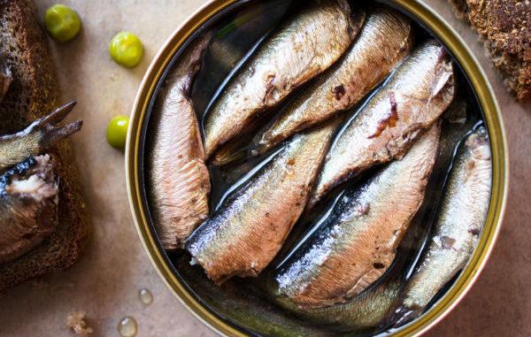 Demir içeren besinler demir deposu konserve sardalya