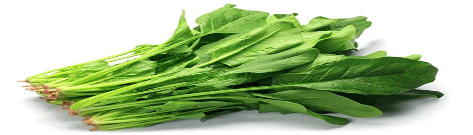 Ispanak - Serotonin içeren besinler 12