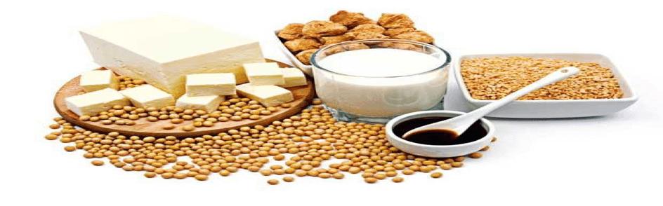 Soya - Serotonin içeren besinler 11